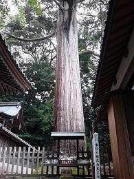 事任八幡宮3.jpg