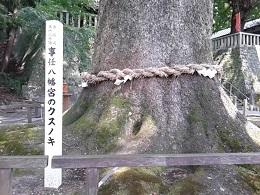 事任八幡宮4.jpg